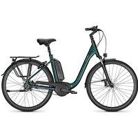 Raleigh E-Bike »KINGSTON PREMIUM«, 8 Gang Shimano Nexus Schaltwerk, Nabenschaltung, Mittelmotor 250 W