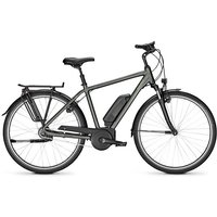 Raleigh E-Bike »JERSEY 8«, 8 Gang Shimano Nexus Schaltwerk, Nabenschaltung, Mittelmotor 250 W
