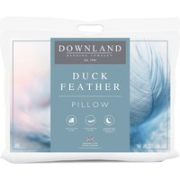 Pair of Downland Duck Feather Pillows Offer