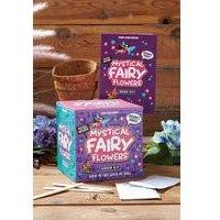 Mystical Fairy Flowers Grow Kit.