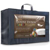 Hungarian Goose Down Junior Cot Bed Pillow