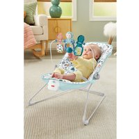 Fisher-Price Babys Bouncer
