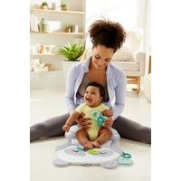Fisher-Price All-in-one Panda Playmat
