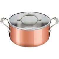 Tefal Copper Induction Premium Stew Pot.