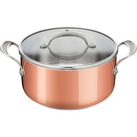 Tefal Copper Induction Premium Stew Pot