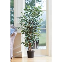 Weeping Fig Artificial Faux Plant