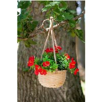 Pack of 2 Basket Bouquet Blossom.