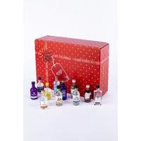 Virgin Wines Luxury Gin Advent Calendar 24 Bottles