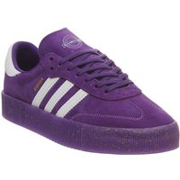 adidas Samba Rose PURPLE WHITE GOLD METALLIC ELIZABETH TFL