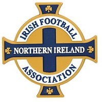 Official Team Northern Ireland 3D Crest Magnet - White - Mens