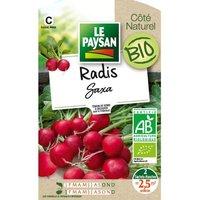 LE PAYSAN Radis saxa bio