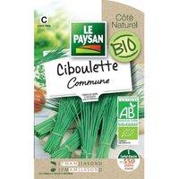 LE PAYSAN Ciboulette commune bio