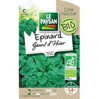 LE PAYSAN Epinard geant d'hiver bio