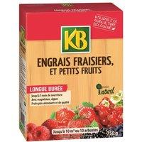 Engrais fraisier 750g /nc