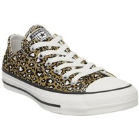 Converse All Star Low CLUB GOLD EGRET LEOPARD HEART EXCLUSIVE