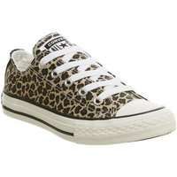 Converse All Star Low Youth LEOPARD