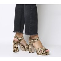 shop for Office Hall Of Fame New Platform Shape CHEETAH PONY at Shopo