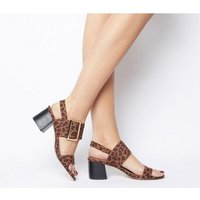 Office O-makeover- Two Part Buckle Sandal LEOPARD