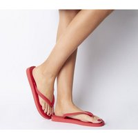 shop for Havaianas Top Flip Flop RUBY RED at Shopo