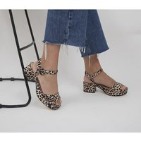 shop for Office Marble Arch Two Part Low Block Heels LEOPARD at Shopo