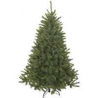 Triumph Tree Forest Frosted Bristlecone Fir Green 155
