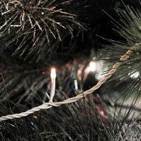 Micro-lichtketting Buiten werkt op het lichtnet LED Warm-wit Konstsmide 3611-102