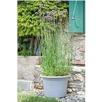 Carré potager Icaverne Jardiniere - bac a fleur pot farnesse - 69 l - ø 60 x h 41,8 cm - gris écume