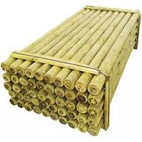 Clôture GENERIQUE Icaverne - poteaux & traverses de clôture contemporain poteaux pointus de clôture 50 pcs bois imprégné 10x240 cm