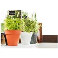 Carré potager Icaverne Jardiniere - bac a fleur pot a fleurs 14 cm collection limited - blanc