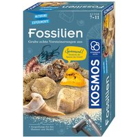Kosmos - Mitbringexperiment: Fossilien Ausgrabungsset