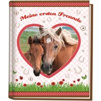Kindergarten-Freundebuch Pferde