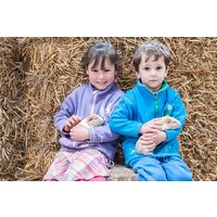 Farm Tour with Animal Handling for Two at Thornton Hall Country Park - Farm Gifts