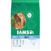 IAMS Adult Dog Large Breed
