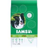 IAMS Adult Dog Small/Medium