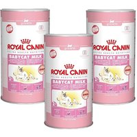 Royal Canin Feline Babycat Milk Triple Pack