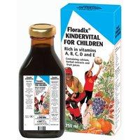 Image of Floradix Kindervital Multivitamin Formula For Children