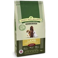 James Wellbeloved Adult Lamb & Vegetable 10kg