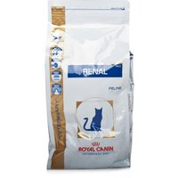 Royal Canin Feline Veterinary Diet Renal