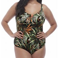 Amazonia Moulded Cup Swimsuit