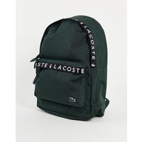 Lacoste taped logo backpack in khaki-Green