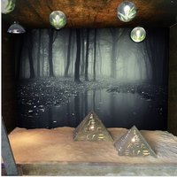 3d-mysterious-forest-photo-wallpaper-spooky-woods-theme-stereoscopic-wall-mural