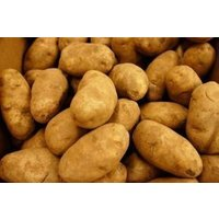 potatoes-russet-fresh-produce-10-lbs
