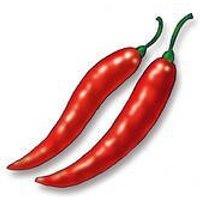 bulk-organic-jalepeno-pepper-seeds-10-lb