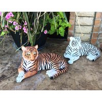 large-pair-of-raja-the-royal-bengal-tiger-ghost-the-siberian-white-tiger-15