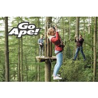 Tree Top Adventure for One Adult and Two Children at Go Ape - Children Gifts
