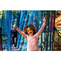 Treetop Nets Adventure for One Child