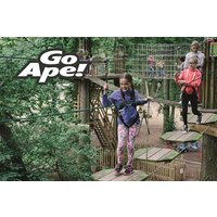 Junior Tree Top Adventure in London for Two Children - Children Gifts