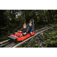 Zip World Fforest Coaster Shared Sled Ride - Adult And Child Picture