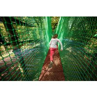 Zip Trek And Treetop Nets For Two At Treetop Trek Picture