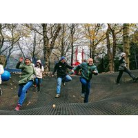 Zip Trek And Treetop Nets For One At Treetop Trek Picture